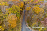 63876-02606 Aerial view of fall color trees and road Stephen A. Forbes State Park Marion Co. IL