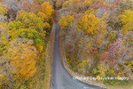 63876-02608 Aerial view of fall color trees and road Stephen A. Forbes State Park Marion Co. IL