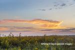 63893-03720 Sunrise and prairie Prairie Ridge State Natural Area Marion Co. IL