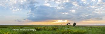 63893-03912 Sunrise over prairie Prairie Ridge State Natural Area  Marion Co. IL