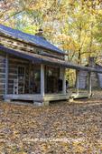 63895-16418 Cabin at Log Cabin Village in fall Kinmundy IL