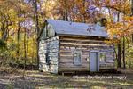 63895-16516 Cabin at Log Cabin Village in fall Kinmundy IL