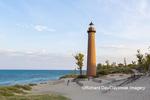 64795-02103 Little Sable Point Lighthouse near Mears, MI