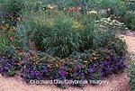 63821-03714 Red Switchgrass (Panicum virgatum), Hero Red Marigolds & Blue Frost Petunias   IL