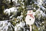 01715-02901 Snowman birdhouse in winter, Marion Co.  IL