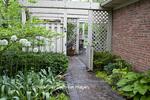63921-00206 Alliums and hostas along brick walkway in spring Indianapolis, IN