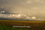 63891-02403 Clouds after storm over field, Marion Co. IL