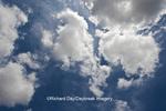 63891-02420 Cumulus clouds in blue sky, Marion Co., IL
