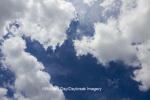 63891-02501 Cumulus clouds in blue sky, Marion Co., IL
