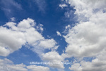 63891-02508 Cumulus clouds in blue sky, Marion Co., IL