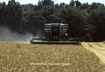 63801-01318 Wheat harvest with Allis Chalmers Gleaner combine.  Marion Co.  IL