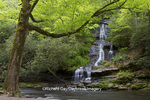 66745-04513 Tom Branch Falls at Deep Creek in spring, Great Smoky Mountains National Park, NC