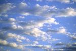 63891-00203 Cumulus clouds     IL