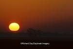 63893-00908 Sunrise over Illinois prairie     IL