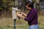 01715-01811  Man inspecting nest box (bluebird, chickadee, titmouse, swallow)  Marion Co.  IL