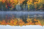64776-01204 Pond in fall color Alger County Upper Peninsula Michigan