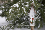 01715-02813 Bird nest box with holiday swag in winter, Marion Co. IL