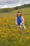 Little girl in a field of flowers at Big Meadows in Shenandoah National Park, Virginia