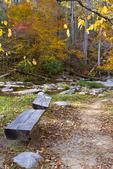 Natural Bridge, trail to the Natural Bridge, fall autumn leaf color, Cedar Creek, Virginia, USA; NaturalBridgeD3B7770_ARS.CR2