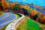 Gooney Run Overlook area, Skyline Drive, Shenandoah National Park, October, Fall, Autumn, Fall foliage, Fall color, Fall colors, Autumn foliage, Autumn color, Autumn colors, deciduous; fall color, fall colors, autumn color, autumn colors, fall leaf color, fall tree color, autumn tree color, autumn leaf color, fall foliage, autumn foliage; Virginia; , USA; VA, Appalachian Mountains, Blue Ridge Mountains, SHEN94-140701.tif