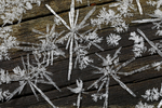 hoar frost, on ground; hoarfrost, Ice Fractals, Ice Crysyals, Winter, wintertime; snow, ice, Shenandoah National Park, Virginia, Appalachian Mountains, Blue Ridge Mountains, USA, ICE017785.CR2