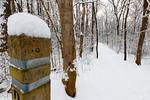 Dickey Ridge Trail in Shenandoah National Park, North Entrance,  Winter season, snow, cold, Virginia, USA, Appalachian Mountains, Blue Ridge Mountains; SHEN011911cds.jpg