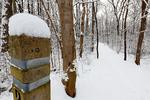 Dickey Ridge Trail in Shenandoah National Park, North Entrance,  Winter season, snow, cold, Virginia, USA, Appalachian Mountains, Blue Ridge Mountains; SHEN011911cs.jpg