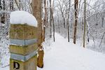 Dickey Ridge Trail in Shenandoah National Park, North Entrance,  Winter season, snow, cold, Virginia, USA, Appalachian Mountains, Blue Ridge Mountains; SHEN011996cs.jpg