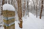 Dickey Ridge Trail in Shenandoah National Park, North Entrance,  Winter season, snow, cold, Virginia, USA, Appalachian Mountains, Blue Ridge Mountains; SHEN011916cHDRzs.jpg