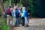 Rio Claro Reserve, birding, bird watching, wildlife watching, photography {photographer}; Cabanas la Mulata, Colombia, South America; COLU102567_P.tiff