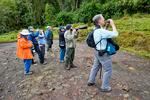 La Finca El Cortaderal in Santa Rosa de cabal municipality; birding, nature and bird photography; Colombia, South America; COLU110736_P.tiff