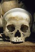 HUMAN SKULL AT THE KILLING FIELDS, CHOEUNG EK, CAMBODIA