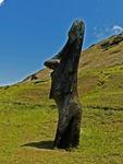 MOAI ON THE SOUTHERN SLOPE OF RANO RARAKU,  EASTER ISLAND