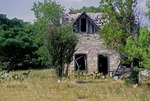 DEER IN FIELD BY DELAPIDATED LIMESTONE BLOCK FARMHOUSE, CENTRAL TEXAS
