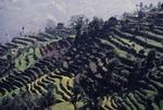 TEDRRACED FIELDS NEAR KATHMANDU, NEPAL