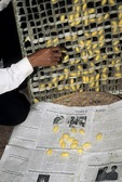 INSTRUCTOR REMOVING SILKWORM COCOONS FROM PUPATION FRAME, SIEM REAP, CAMBODIA