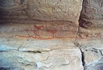 PICTOGRAPHS OF WATER SYMBOLS & DRAGONFLIES, HUECO TANKS, FAR WEST TEXAS