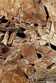 VERY REALISTIC PETROGLYPHS OF A GIRAFFE, BUSHMAN, TWYFELFONTEIN, DAMARALAND, NAMIBIA