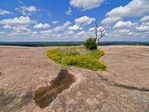 VERNAL POND WITH ESTABLISHED PLANT COMMUNITY, ENCHANTED ROCK, CENTRAL TEXAS