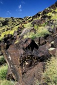 PETROGLYPH OF MASK TO SEE BOTH WAYS. WEST MESA, NEW MEXICO