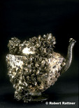 Teapot encrusted with Zebra Mussels found in Lake Erie