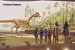 Dinosaur State Park Exhibit Building