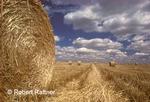 Hayrolls in field