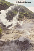Steaming vents at drive-in volcano / sulphur springs