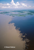 Amazon River at the confluence of the Solimoes River and the Rio Negro
