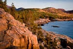 Autumn color on the rocky coast of Downeast Maine, seen from the Shore Path in Acadia National Park, ME