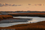 Mill Creek marsh, Sandwich, Cape Cod, MA