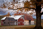 Fall foliage in Bristol, VT