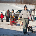 Getting ready for the Farmington Sprint Sled Dog Races in Farmington , ME, USA