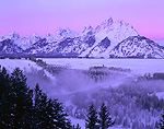 GRAND TETON NATIONAL PARK, WYOMING. USA. Grand Teton and Teton Range at dawn above frosted trees and fog along Snake River. Snake River Overlook. Very cold winter morning in Jackson Hole. Rocky Mountains.